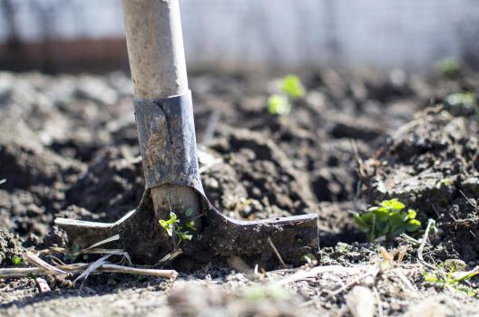 Quels sont les travaux de jardinage qui sont concernés par la réduction d'impôts ?